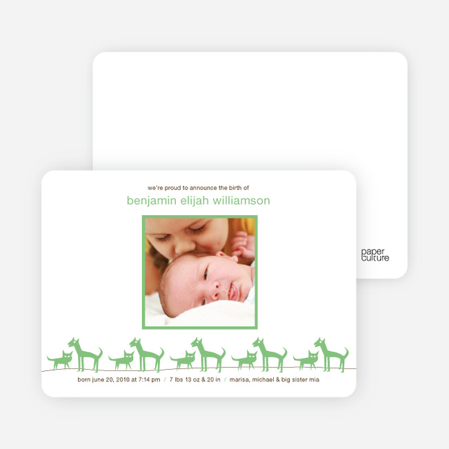 Cats and Dogs Photo Baby Announcement - Spearmint Green