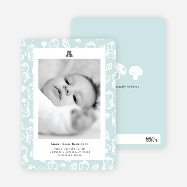 Framed Owl Birth Announcements - Blue Bib