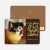 Holiday Cheer Holiday Photo Cards - Terra Cotta