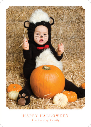 Matte It Halloween Cards - Carrot