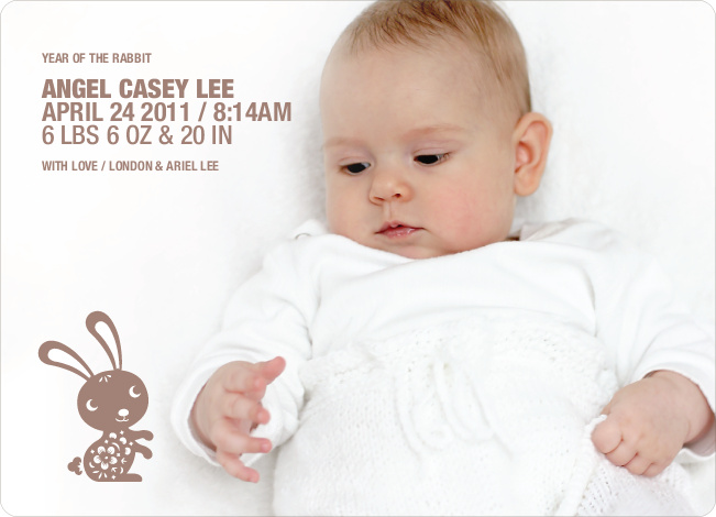 Simply Rabbit Photo Birth Announcements - Chocolate Bunny