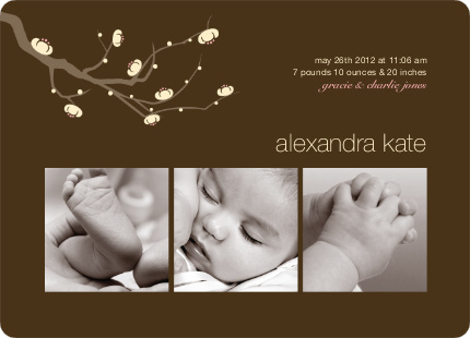 Modern Tree Branch Baby Announcement - Dark Brown