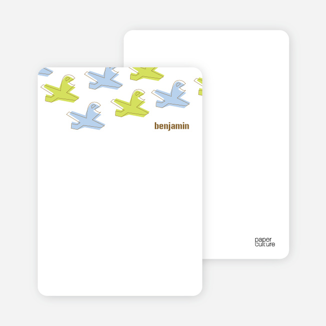 Note Cards: 'Soaring Airplane' cards. - Sapphire