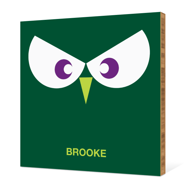 Owl Face Modern Wall Art - Forest Green