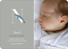 Animal Monogram Series Letter N: Needlefish - Warm Gray