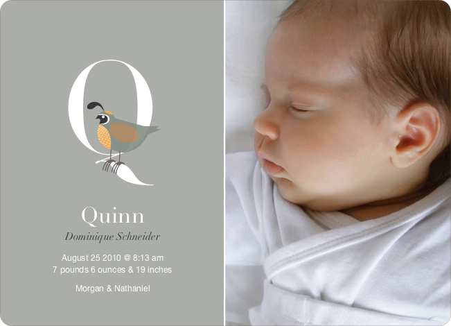 Animal Monogram Series Letter Q: Quail - Warm Gray