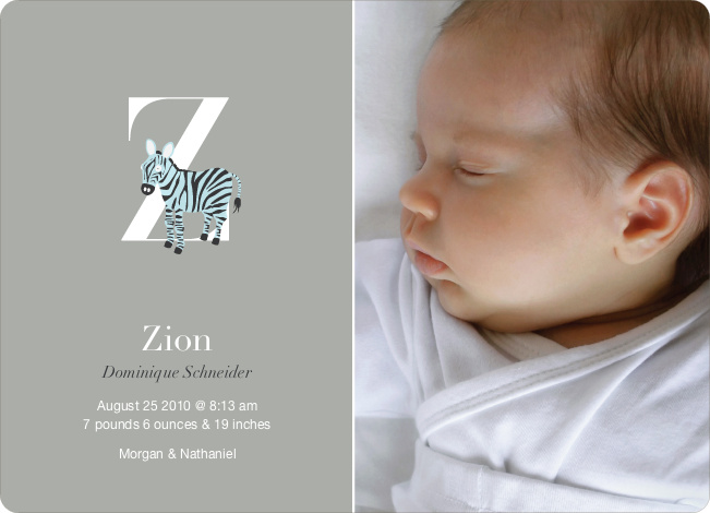Animal Monogram Series Letter Z: Zebra - Warm Gray