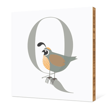 Alphabet Animals Q Quail - Warm Gray