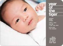 Year of the Tiger Announcement - Ash