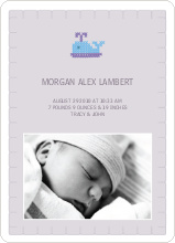 Quilted Whale Photo Announcement - Pale Purple