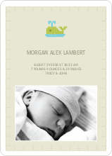 Quilted Whale Photo Announcement - Pale Green