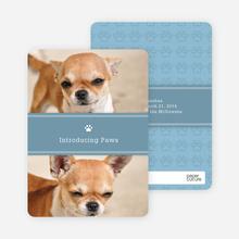 2 Photo Dog Cards - Blue
