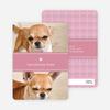 2 Photo Dog Cards - Main View
