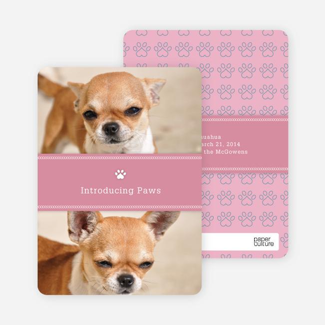 2 Photo Dog Cards - Pink