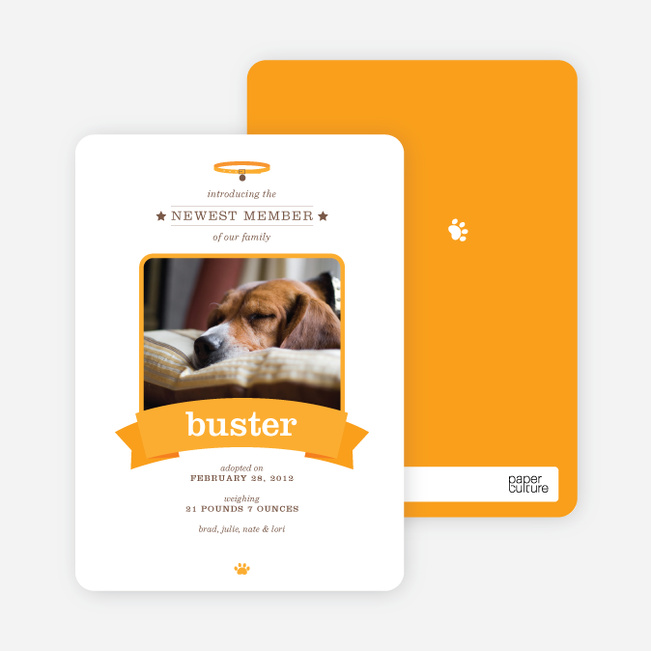 Banner Announcement Dog Photo Cards - Orange