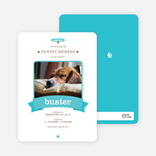 Banner Announcement Dog Photo Cards - Blue