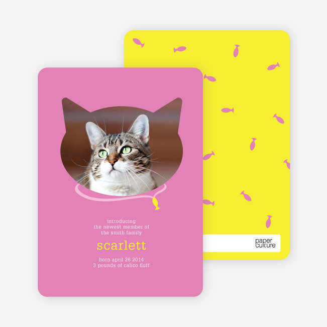 Cat Head Photo Card - Orange