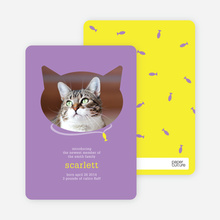 Cat Head Photo Card - Purple