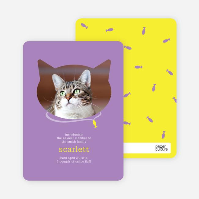 Cat Head Photo Card - Purple