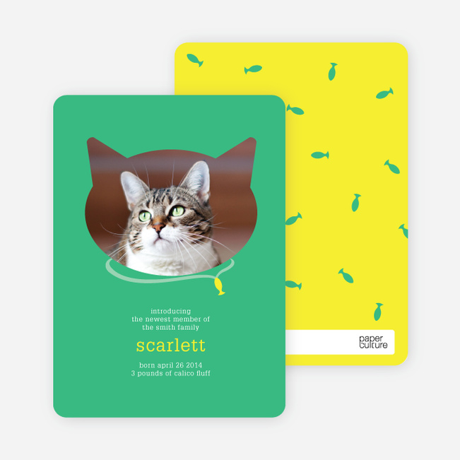 Cat Head Photo Card - Green