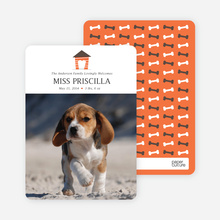 Dog House Puppy Announcements - Orange