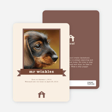 Dog Story Card - Brown