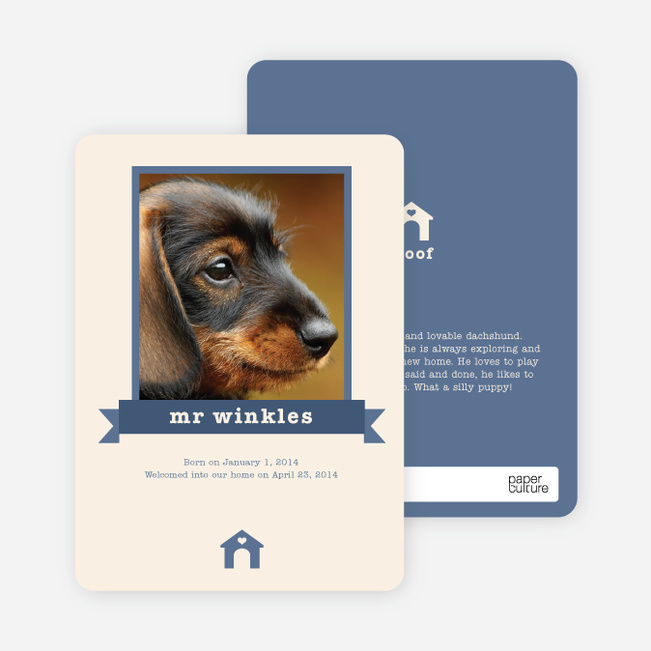 Dog Story Card - Blue