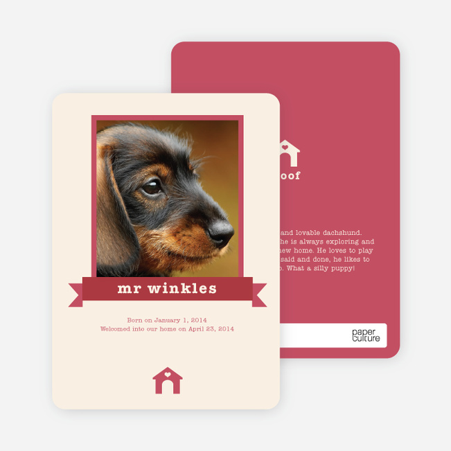 Dog Story Card - Red