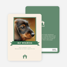 Dog Story Card - Green