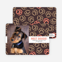 Paws–itively Marvelous Dog Cards - Orange