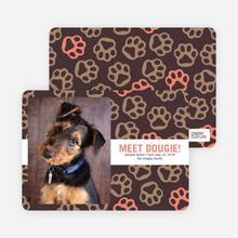 Paws-itively Marvelous Dog Cards - Orange
