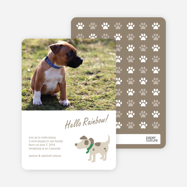 Puppy Dog Paws Pet Cards - Green