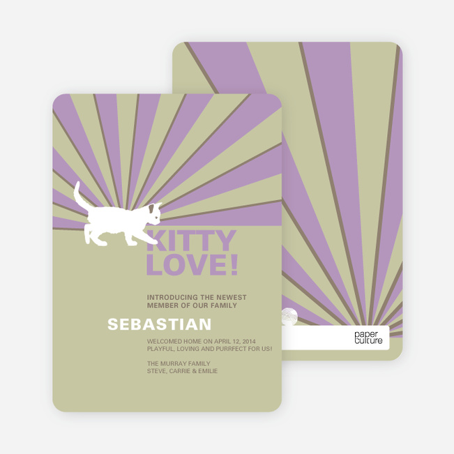 Rays of Light Cat and Dog Cards - Purple