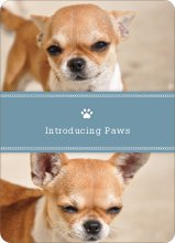 2 Photo Dog Cards - Blue