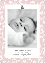 Framed Owl Birth Announcements - Craddle Pinky