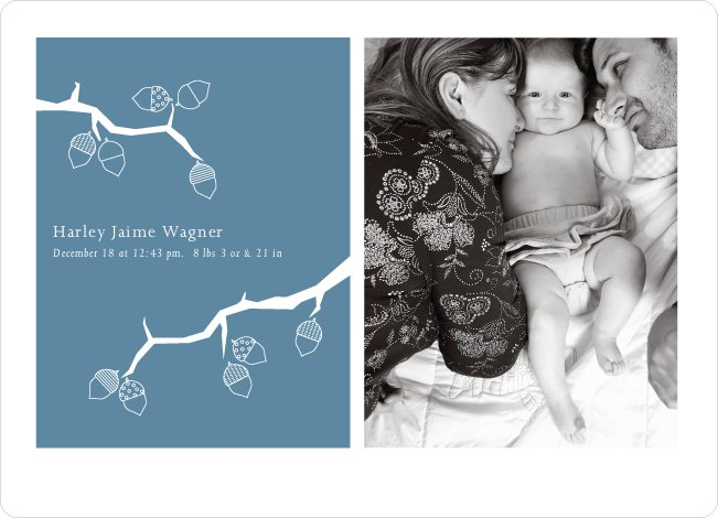 Holiday Birth Announcements: Expanding the Family Tree - Mystic Blue
