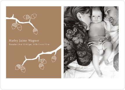 Holiday Birth Announcements: Expanding the Family Tree - Copper