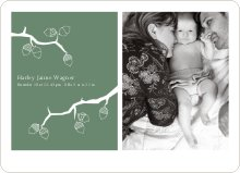 Holiday Birth Announcements: Expanding the Family Tree - Pistachio