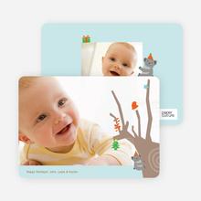 Koala Photo Cards for the Holidays - Powder Blue