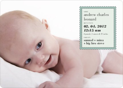 Neither Rain Nor Sleet Nor Snow Nor Hail Baby Announcements - Sage