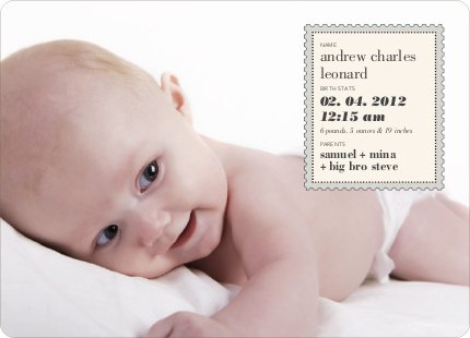 Neither Rain Nor Sleet Nor Snow Nor Hail Baby Announcements - Sand
