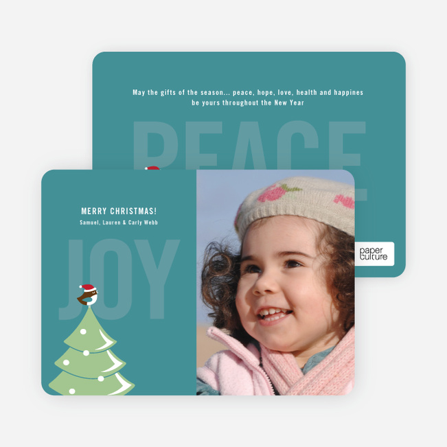 Not just For the Birds Holiday Cards - Teal