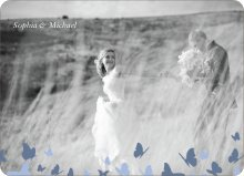 Butterfly Thanks - Blue