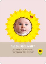 Sunflower Baby - Blush