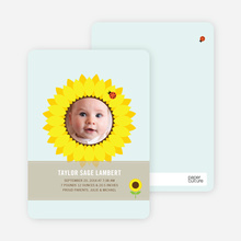 Sunflower Themed Birth Announcements - Glacier