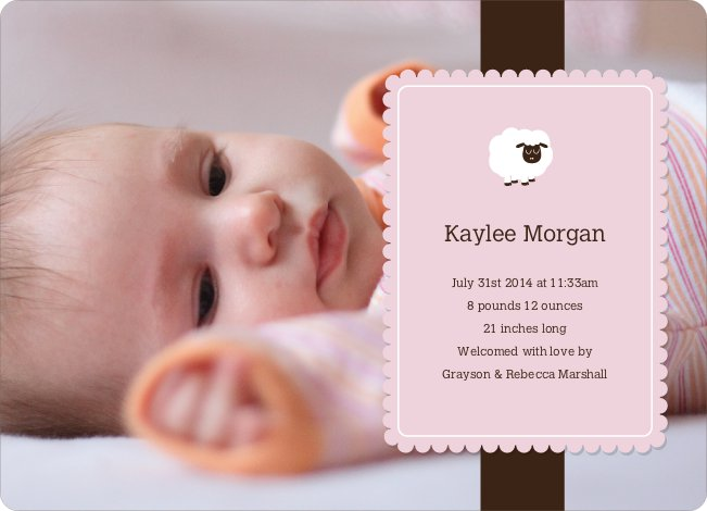 Your Little Lamb Photo Birth Announcements - Carnation