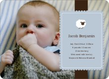 Your Little Lamb Photo Birth Announcements - Dusty Blue