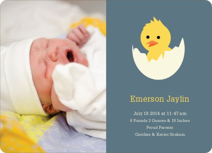 Your Newborn Has Hatched: Modern Baby Announcement - Slate Grey