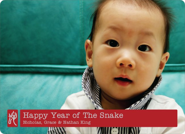 Chinese Chop Year of the Snake - Red