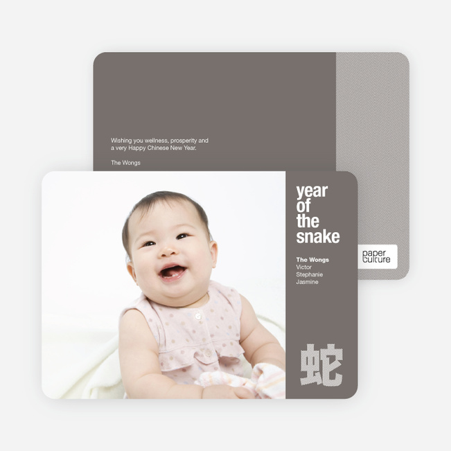 Modern Year of the Snake Lunar New Year Photo Cards - Gray
